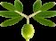 eutropia-logo-homepage-2.png