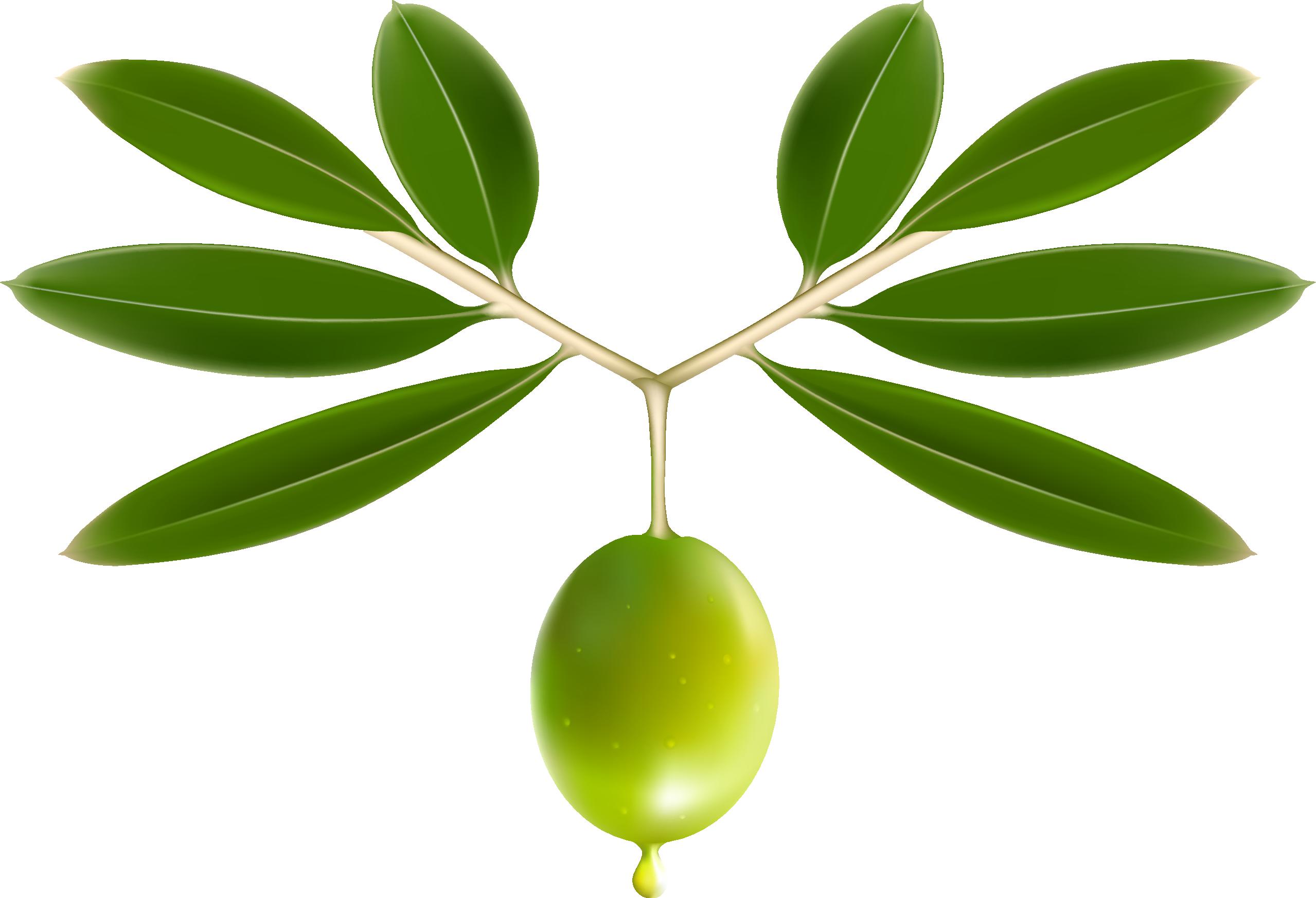 eutropia-logo-homepage-2